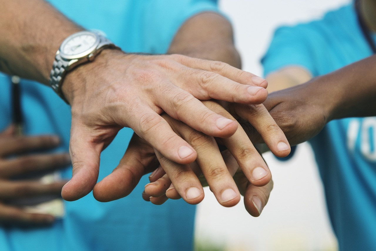 Don d'organe en France : quelles sont les démarches ?